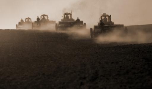 45 сельхозтоваропроизводителей Волгоградской области получат в этом году бюджетную поддержку